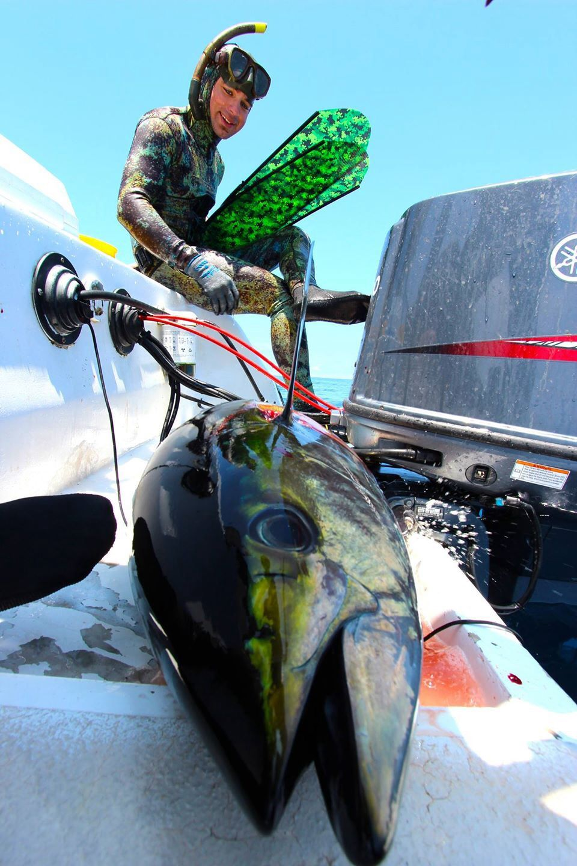 Spearfishing Panama Spearfishing, Sport fishing, Bowfishing