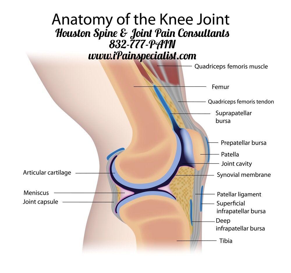 Pin von Houston Spine & Joint Pain Consultants auf Knee Pain | Pinterest