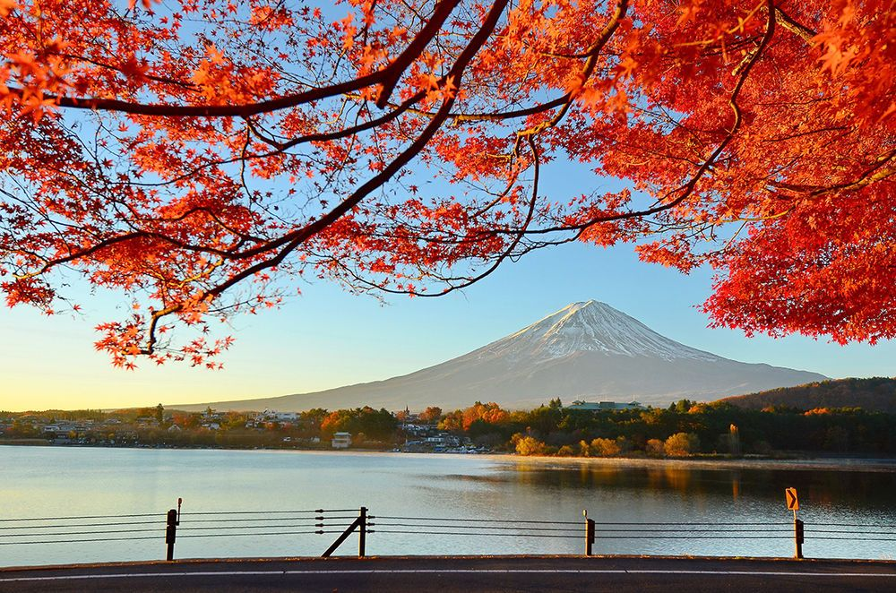 Japan's Autumn Leaves from Wendy Wu Tours
