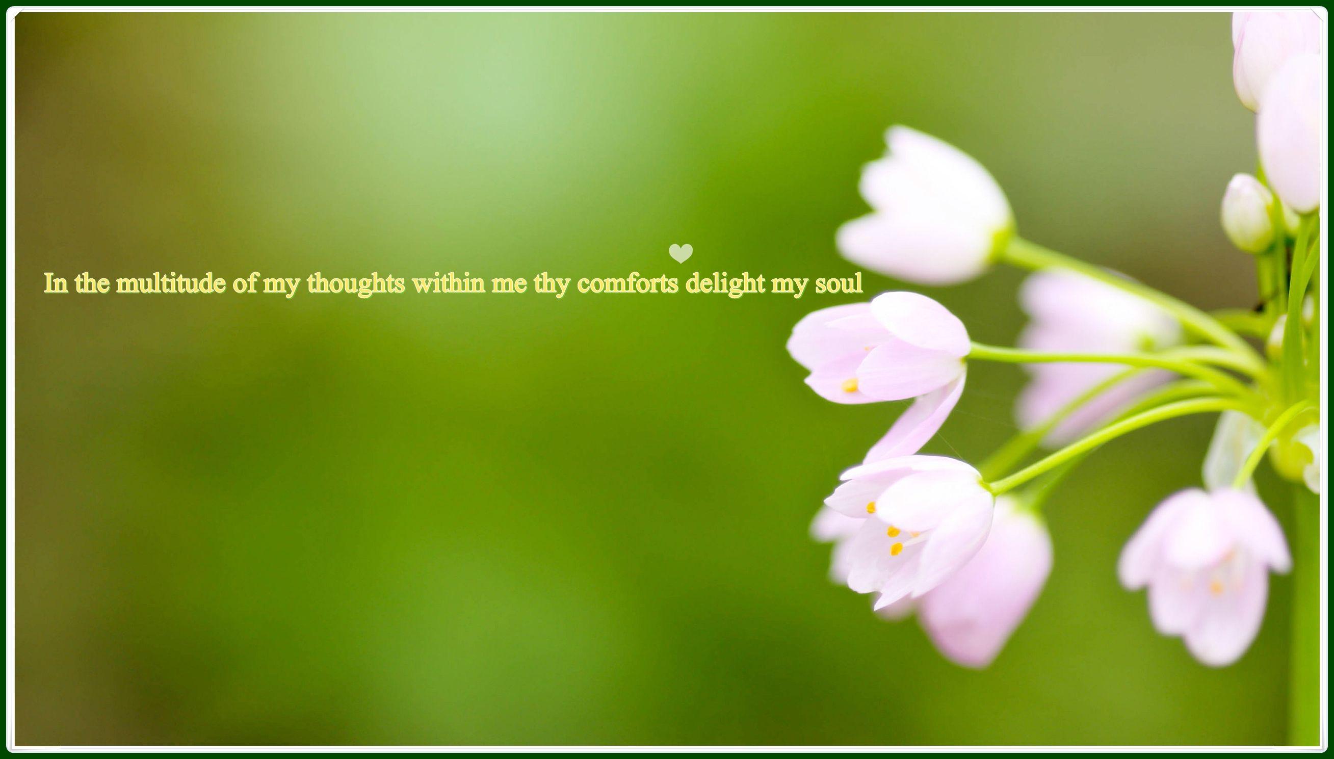Thankyou Holy Spirit for your comfort | Thanksgiving | Pinterest
