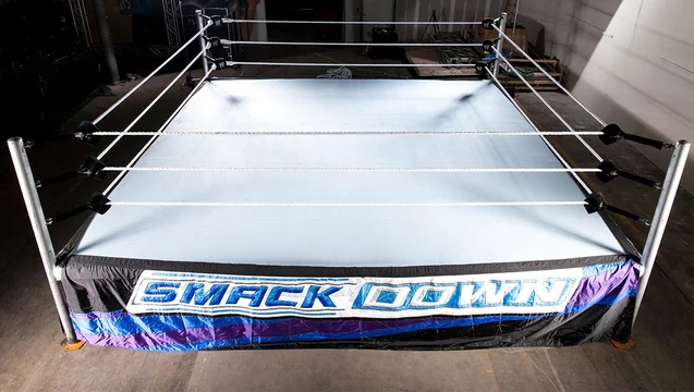How Much Does A Wrestling Ring Cost Wrestling Ring Worst Injuries Wwe Wrestlers