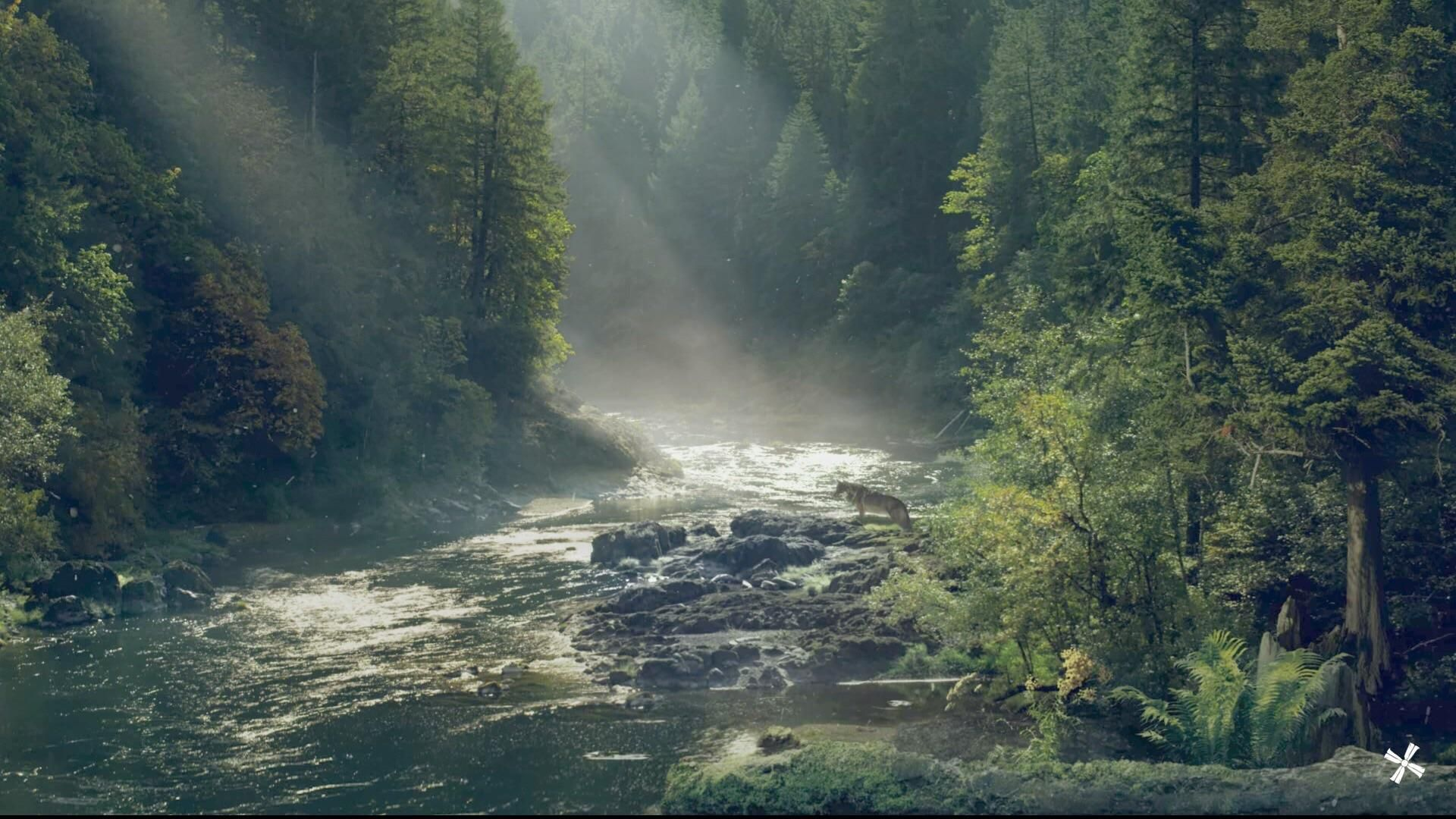 The Farcry 5 Loading Screen Is Beautiful Far Cry 5 Nature Images Background Images