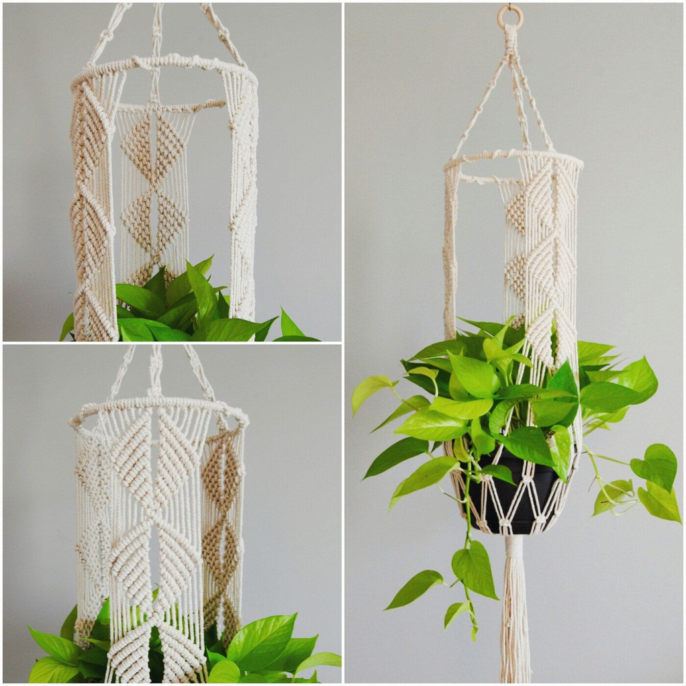 New in the shop: macramé lantern plant hanger