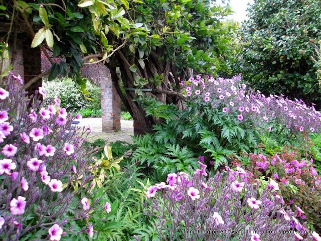 Finding Pretty Again: Peace in the garden of Helderberg Hospice ...