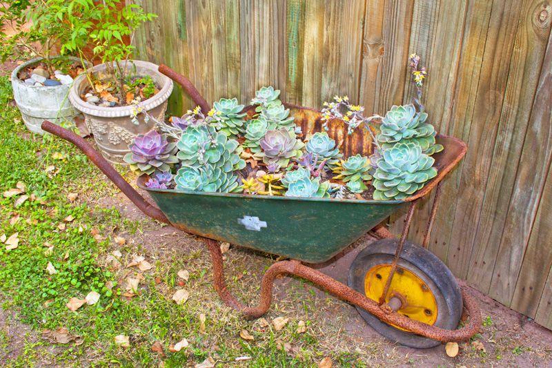 33 Wheelbarrow Planter Ideas For Your Garden Wheelbarrow Garden