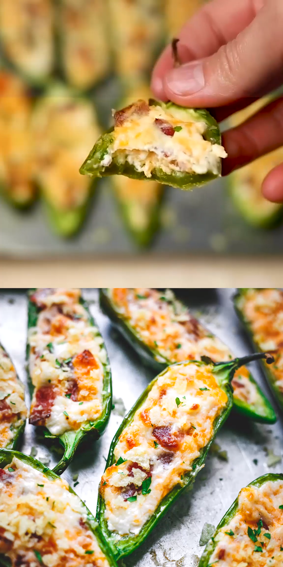 Crunchy Bacon Cheddar Jalapeno Poppers