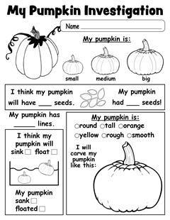 pumpkin investigation worksheet free printable worksheets activities lesson plans for. Black Bedroom Furniture Sets. Home Design Ideas