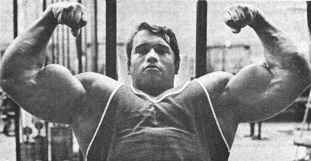 40 Greatest Arnold Schwarzenegger Quotes That Will Inspire You To Win. Bodybuilding  MotivationBodybuilding ...