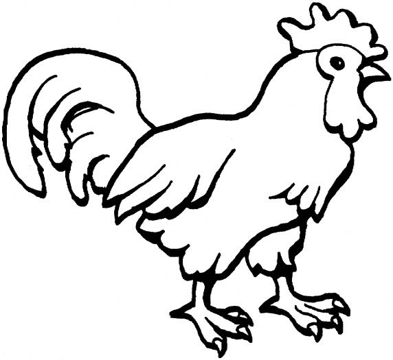 Rooster And Hen Coloring Pages Google Search Chicken Coloring