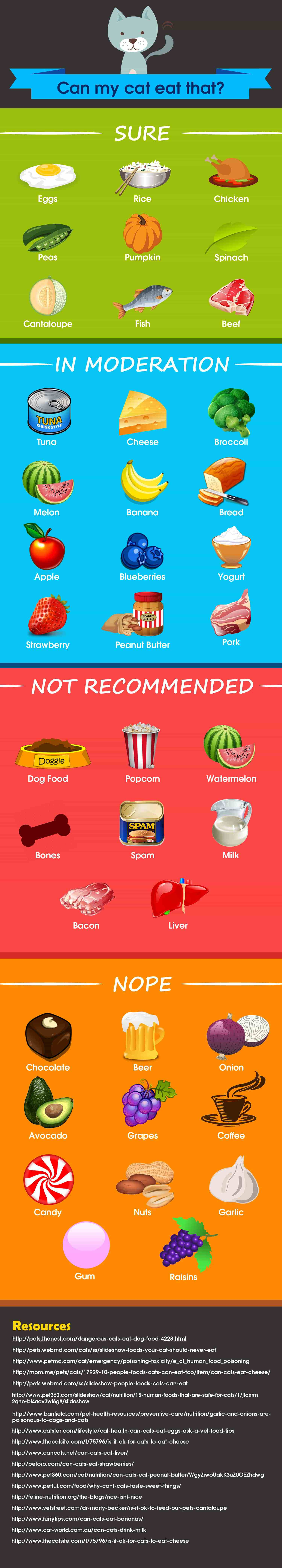 what human foods are bad for cats