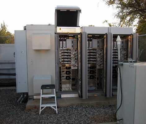 Cell sites - Google Search