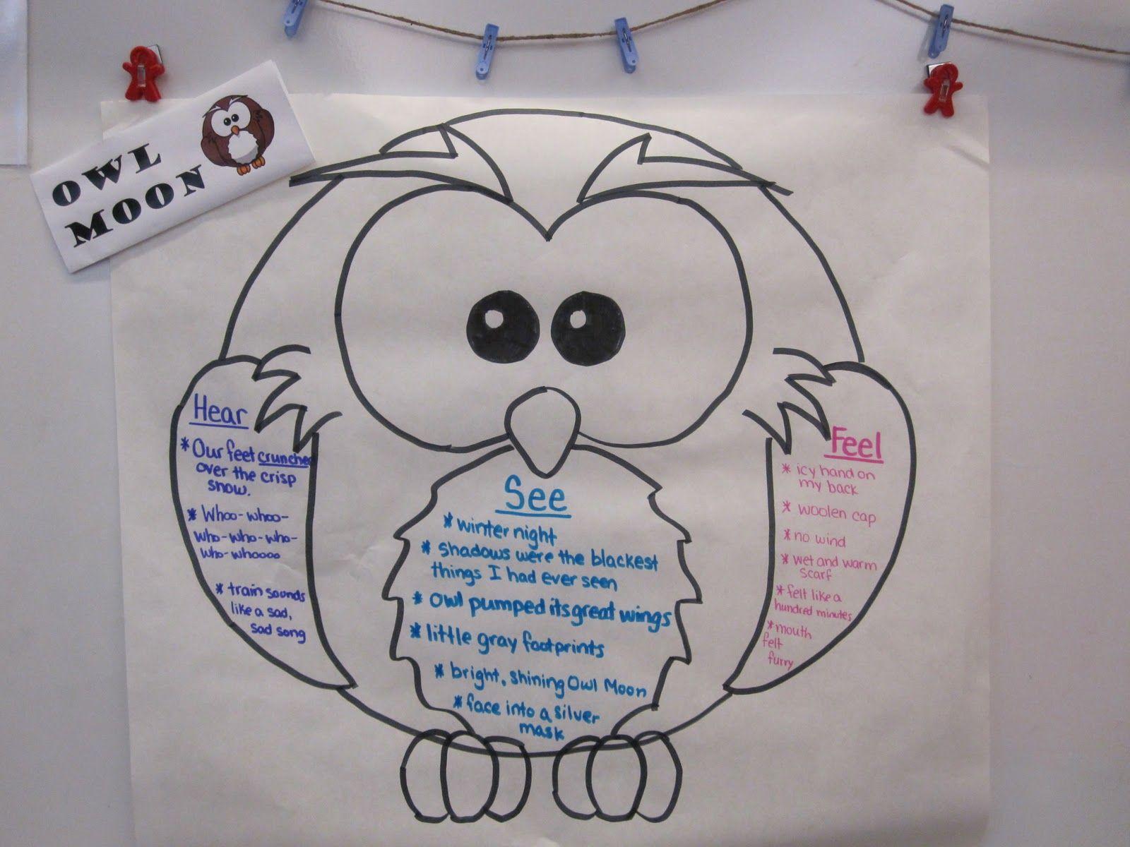 Owlmoon Graphic Organizer