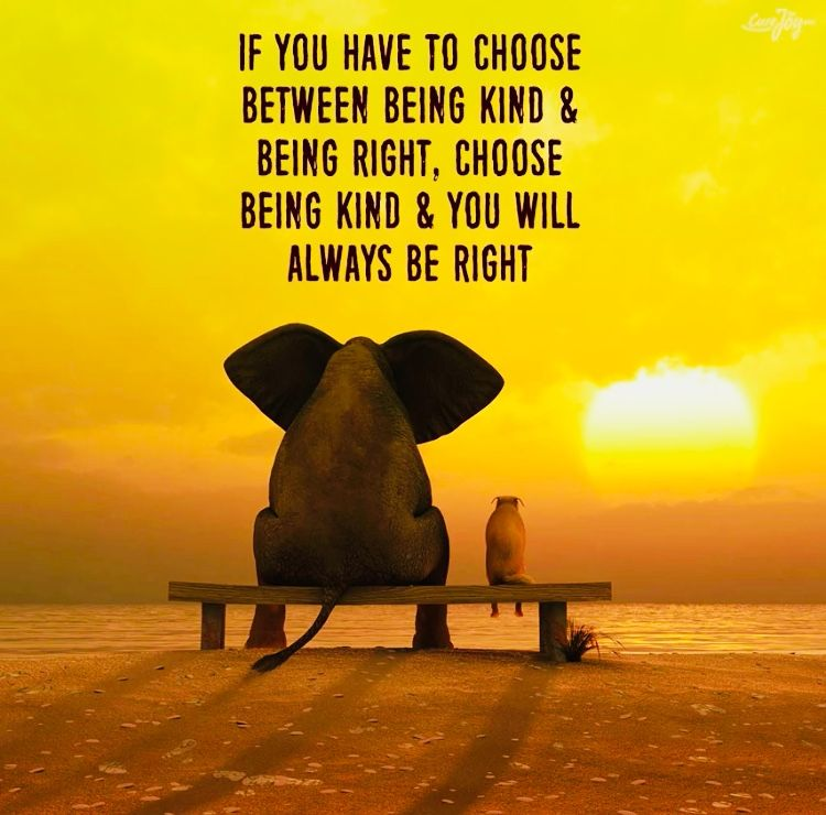 Choose Being Kind And You Will Always Be Right With Images