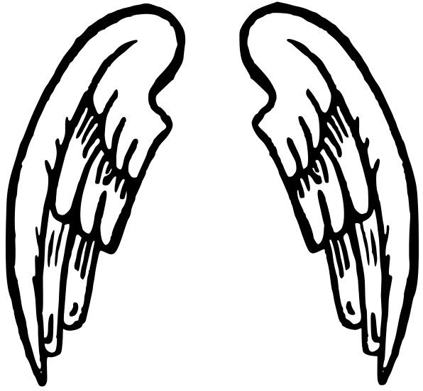 Clip Art Wing Clip Art 1000 images about good graphics on pinterest clip art wings and search