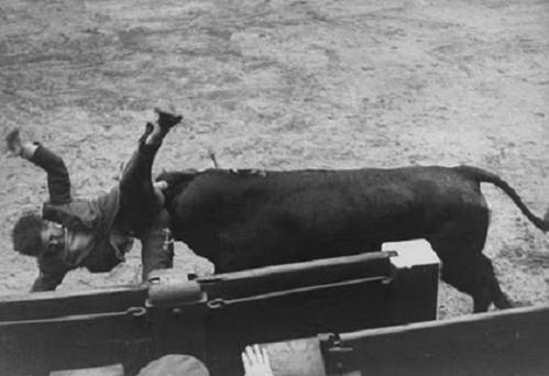 """Tal día como hoy, en 1957, un joven maletilla se lanzó a un toro de Escudero Calvo en la plaza de Las Ventas de Madrid . Toreaban Juan Antonio Romero, Antonio del Olivar y Pablo Lozano. Cuando saltó al ruedo, sufrió una espectacular cogida afortunadamente sin consecuencias. Con la ropa hecha trizas, fue detenido por la policía. Ese joven torero revolucionó años más tarde la tauromaquia. Era Manuel Benítez """"El Cordobés""""."""