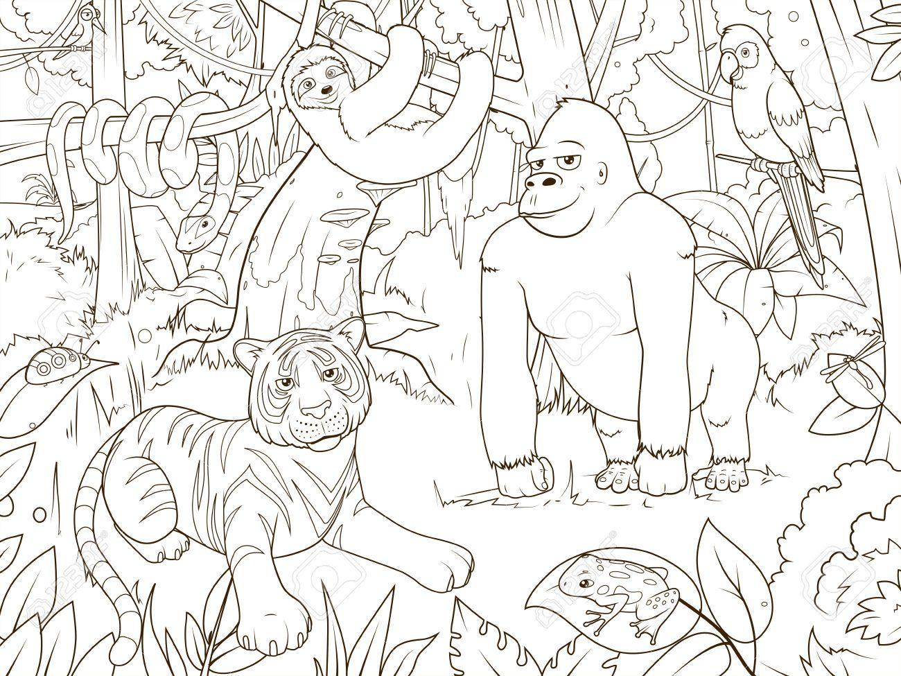 Risultati Immagini Per Foresta Da Colorare Animaux De La Jungle Coloriage Jungle Coloriage Animaux