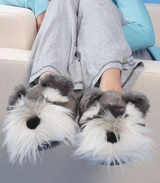 Dog Slippers Uk Schnauzer