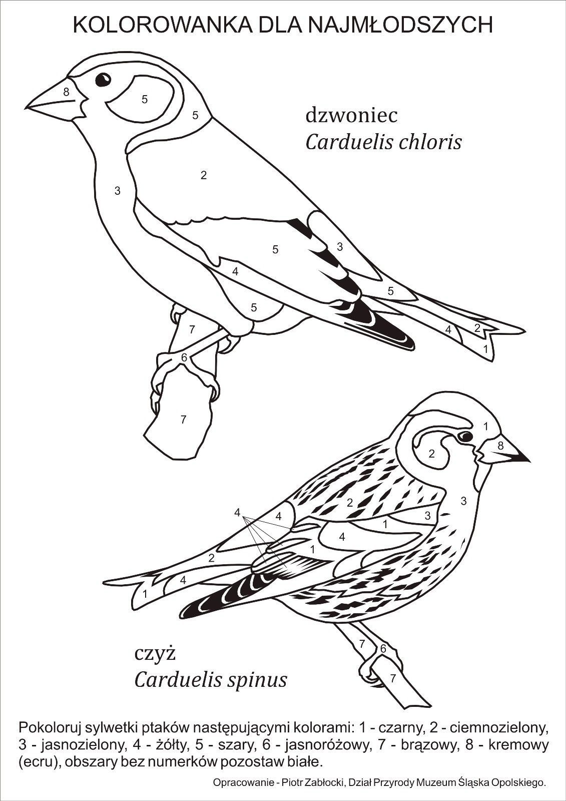 Pin On Adult Coloring By Number