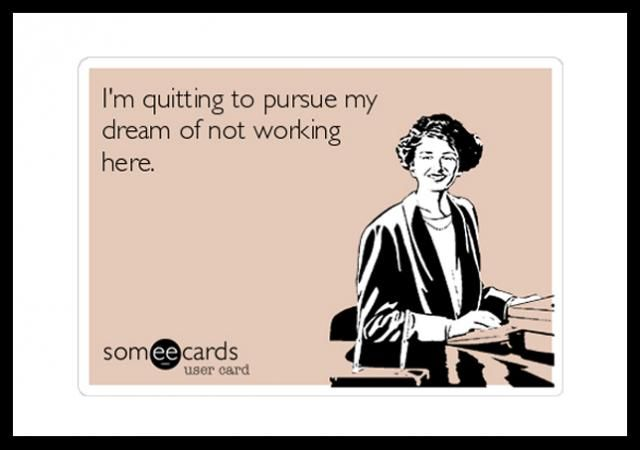 Everyone Is Quitting Law Except Anti Social Babies And Jerks Work Humor Humor Quotes Ecards I Quit My Job