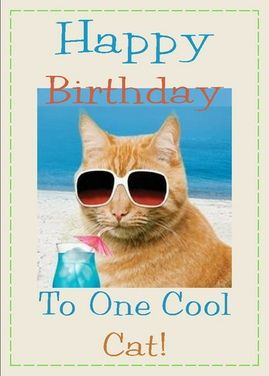 Happy Birthday To One Cool Cat This Is A Real Card Not An E Shared From Sendcere Edit Revise Your Liking Or Just Leave It And Add