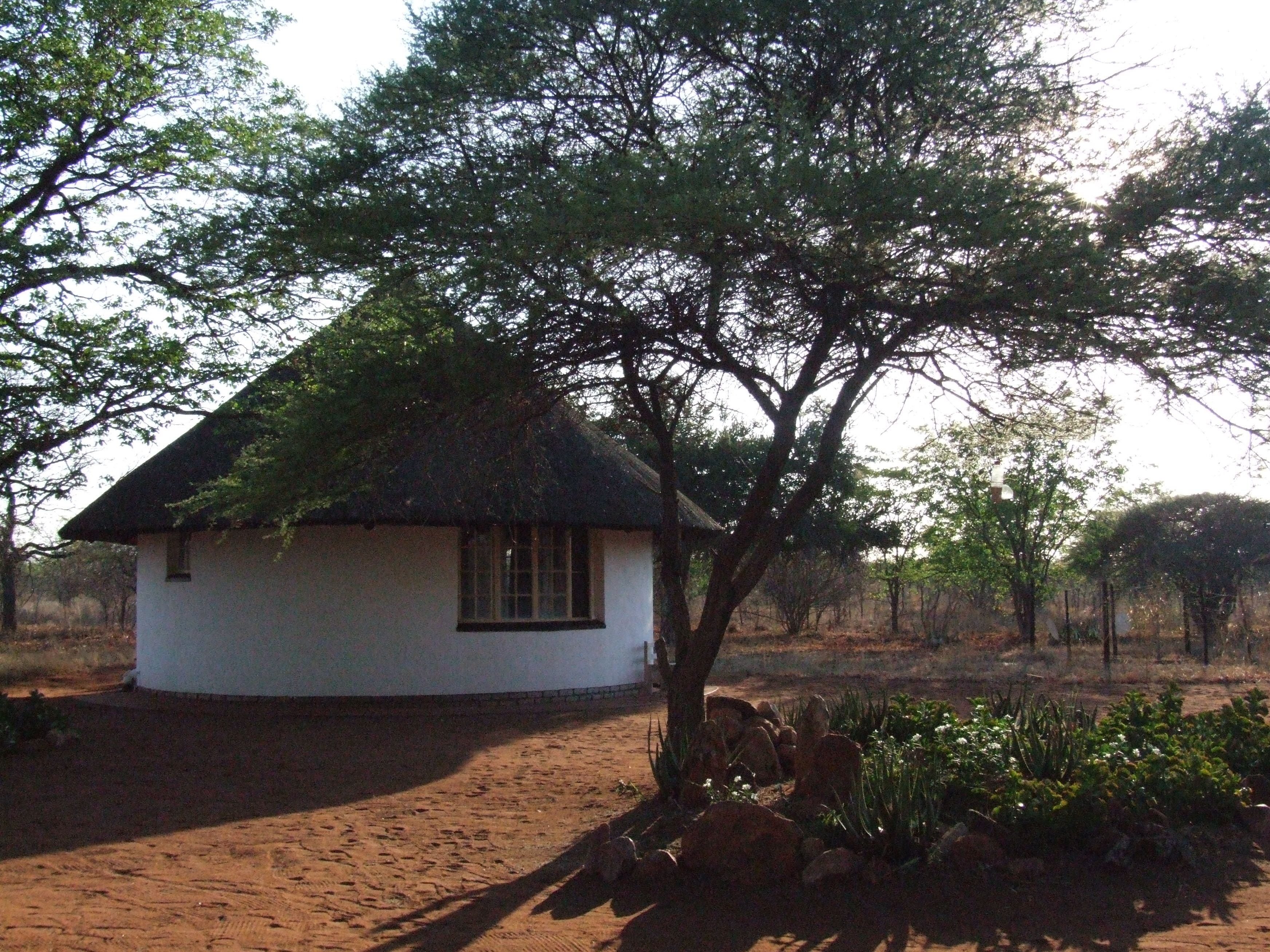 Accommodation for the volunteers is in thatched rondavels south africa volunteer camp