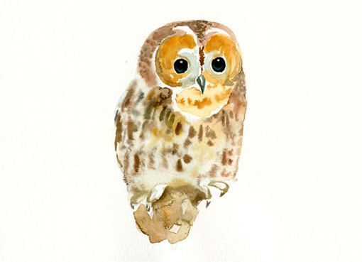 TAWNY OWL 7x5inch- Nursery decor squirrel -children wall art-animal ...