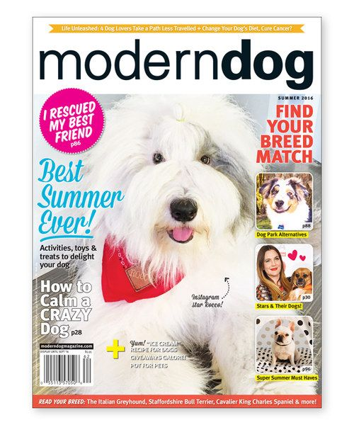 Look At This Modern Dog Magazine Subscription On Zulily Today Modern Dog Magazine Dog Magazine Modern Dog