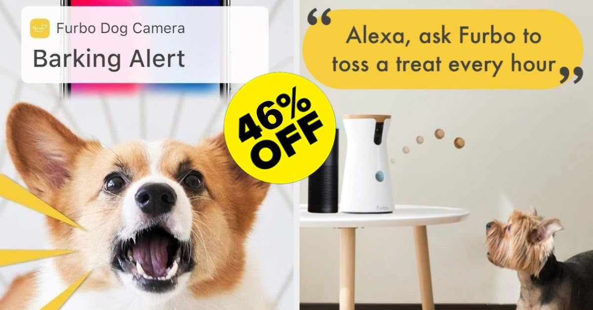Furbo A Treat Dispensing Camera Is A Great Gift For Dog Owners And It S Almost Half Off Right Now Gifts For Dog Owners Dog Gifts Dog Owners