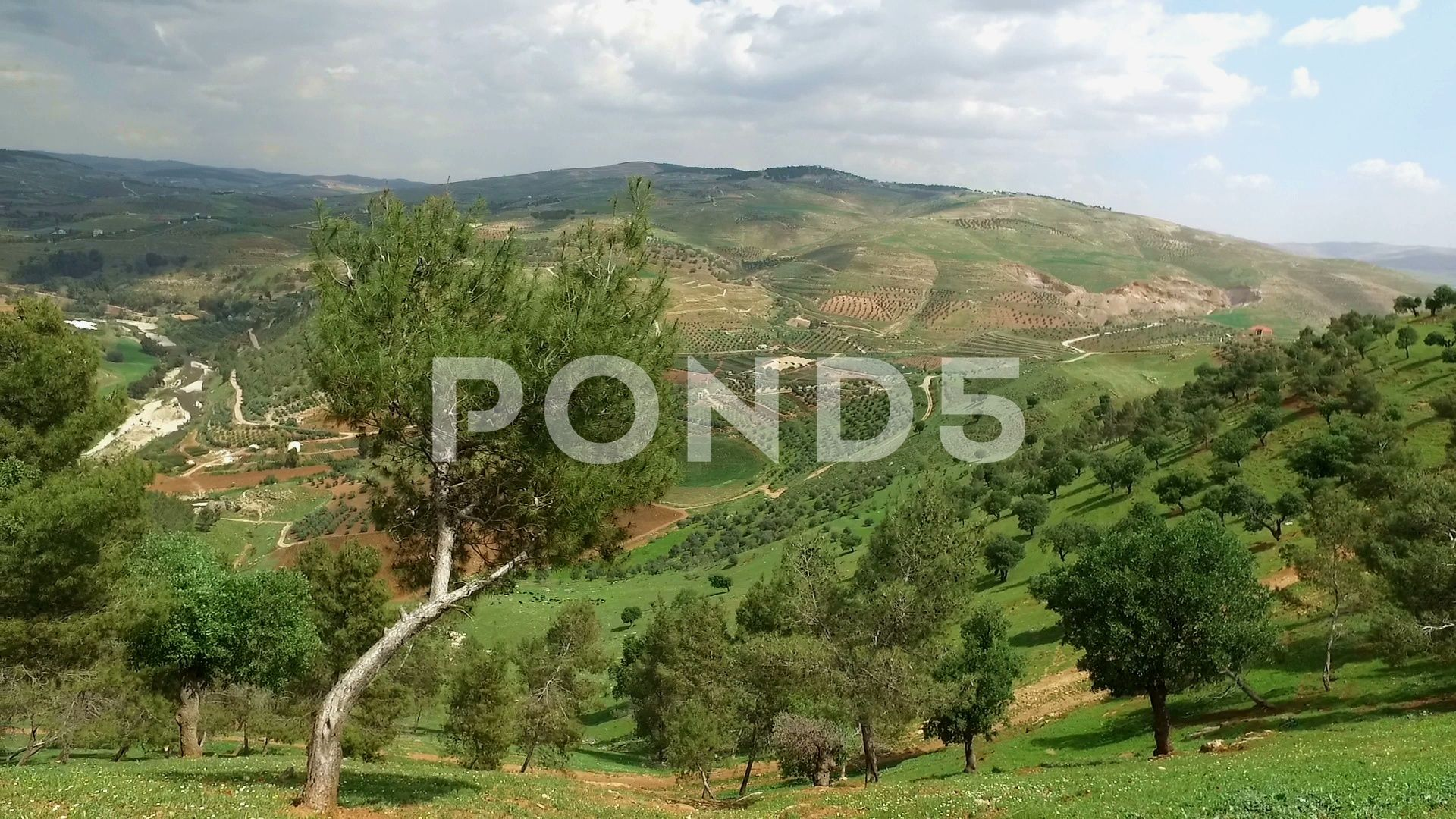 Beautiful Nature View From Above Walk On The Nature Stock Footage Ad View Nature Beautiful Footage Beautiful Nature Nature View Nature