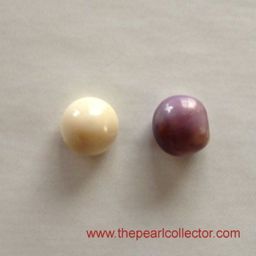 Quahog Pearls