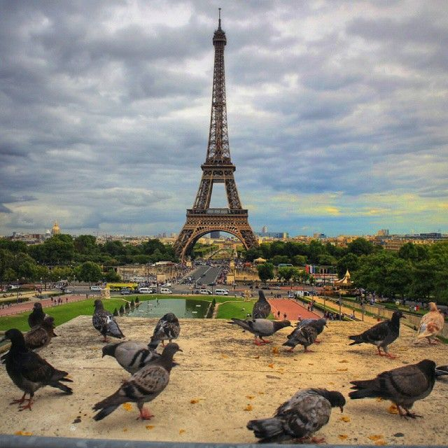 onderkoca #paris Good morning from #paris http://instagram.com/p/sO6qGuB0jb/