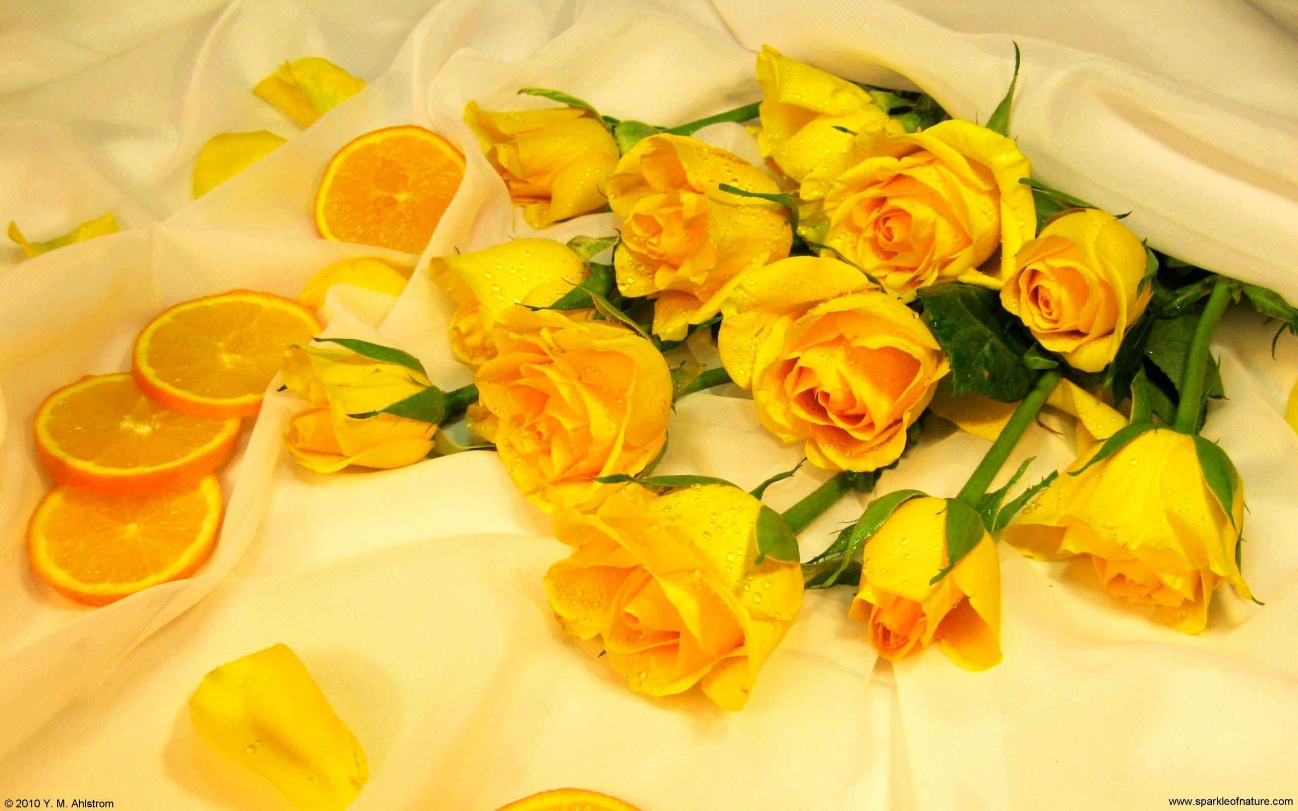 Ozihaki Wallpaper Hd New Desktop Wallpaper Flowers Aesthetic In 2020 Yellow Aesthetic Flower Aesthetic Flower Desktop Wallpaper