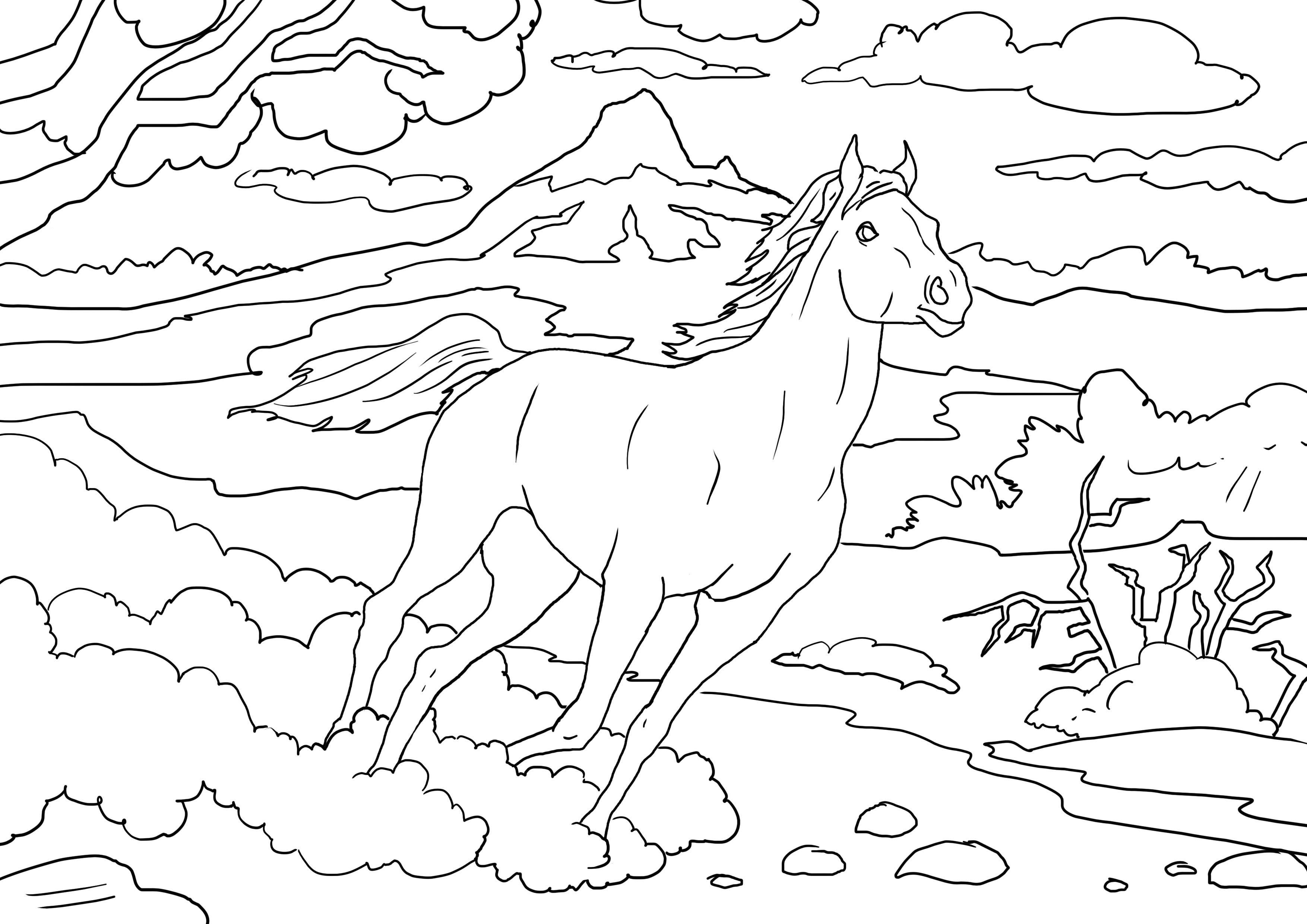 Pin On Horses [ 2480 x 3508 Pixel ]