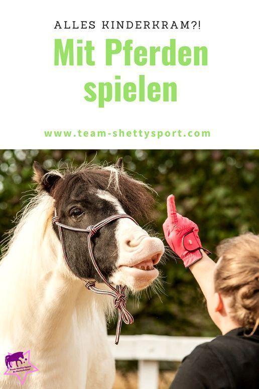 Lernspiele für Pferde Mit Pferden spielen  Lernspiele für Pferde Warum Du nicht nur mit Deinem Pferd trainieren sondern auch spielen solltest