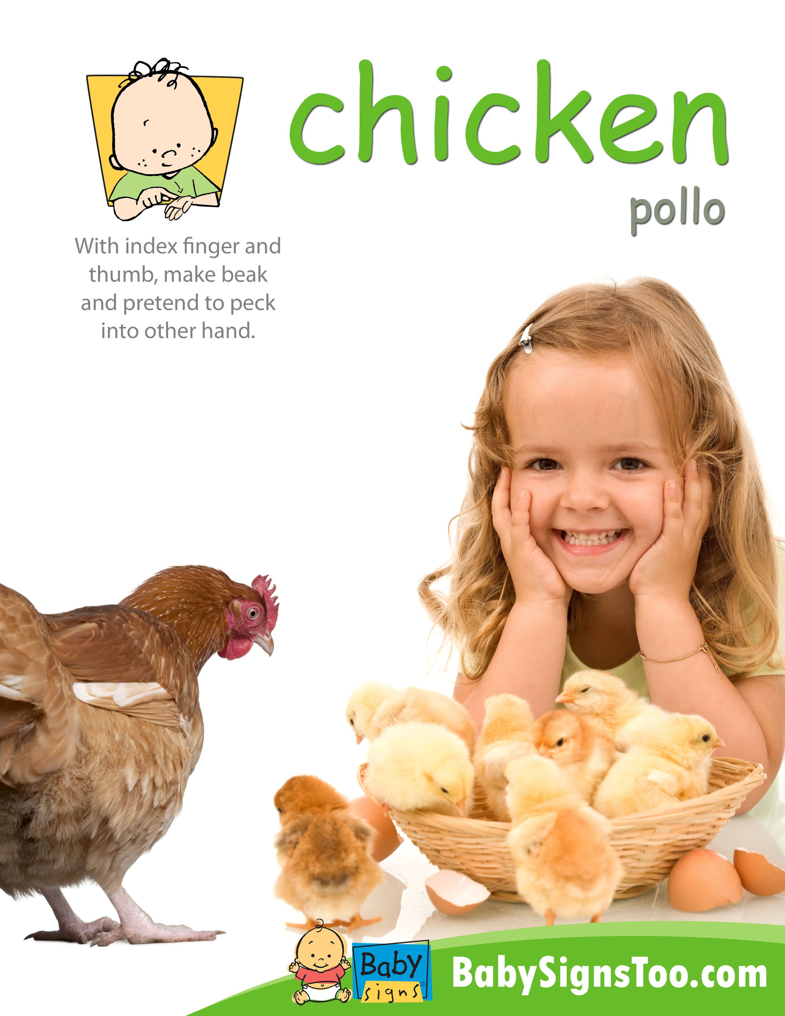 Baby Signs Free Printable Poster With The Asl Sign For Chicken Bysignstoo Babysigns