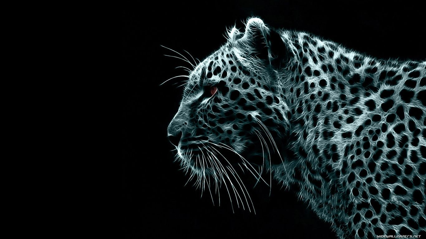cool hd wallpapers | wallpaper, hd wallpaper and snow leopard