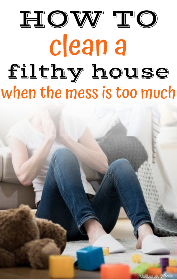 Clean A Disgusting House When The Mess
