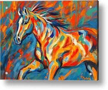 Abstract Acrylic Paintings for Sale | Abstract Horse Painting