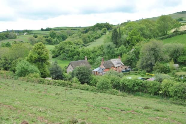 Quintessential English country cottages set in a quiet dell betwist Moor and sea - Roadwater, Som Hune'15