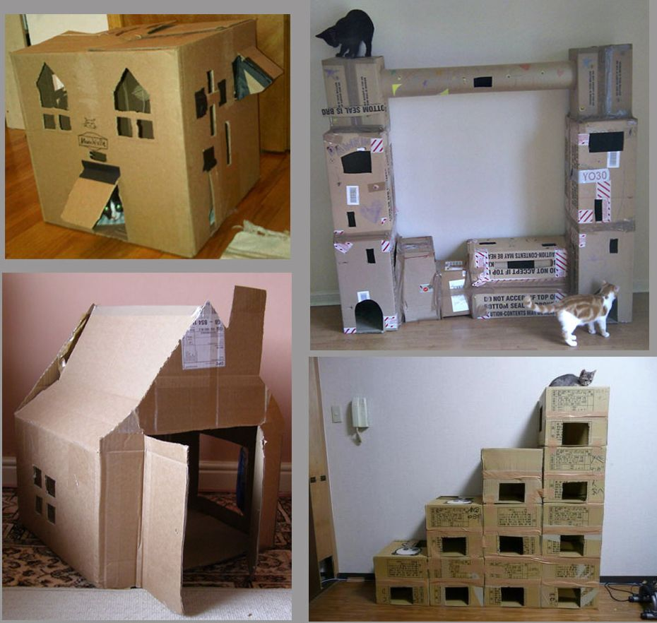 Diy Cat Condo Box Más