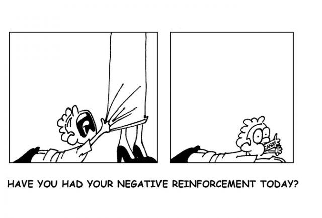 Good Example Of Negative Reinforcement Yes It Happens This Way