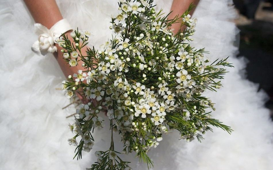 flores - Ramos De Flores Silvestres