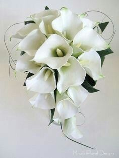 Pin By Kathleen Dailey On Wedding Flowers Calla Lily Bouquet Wedding Lily Bouquet Wedding Lily Wedding
