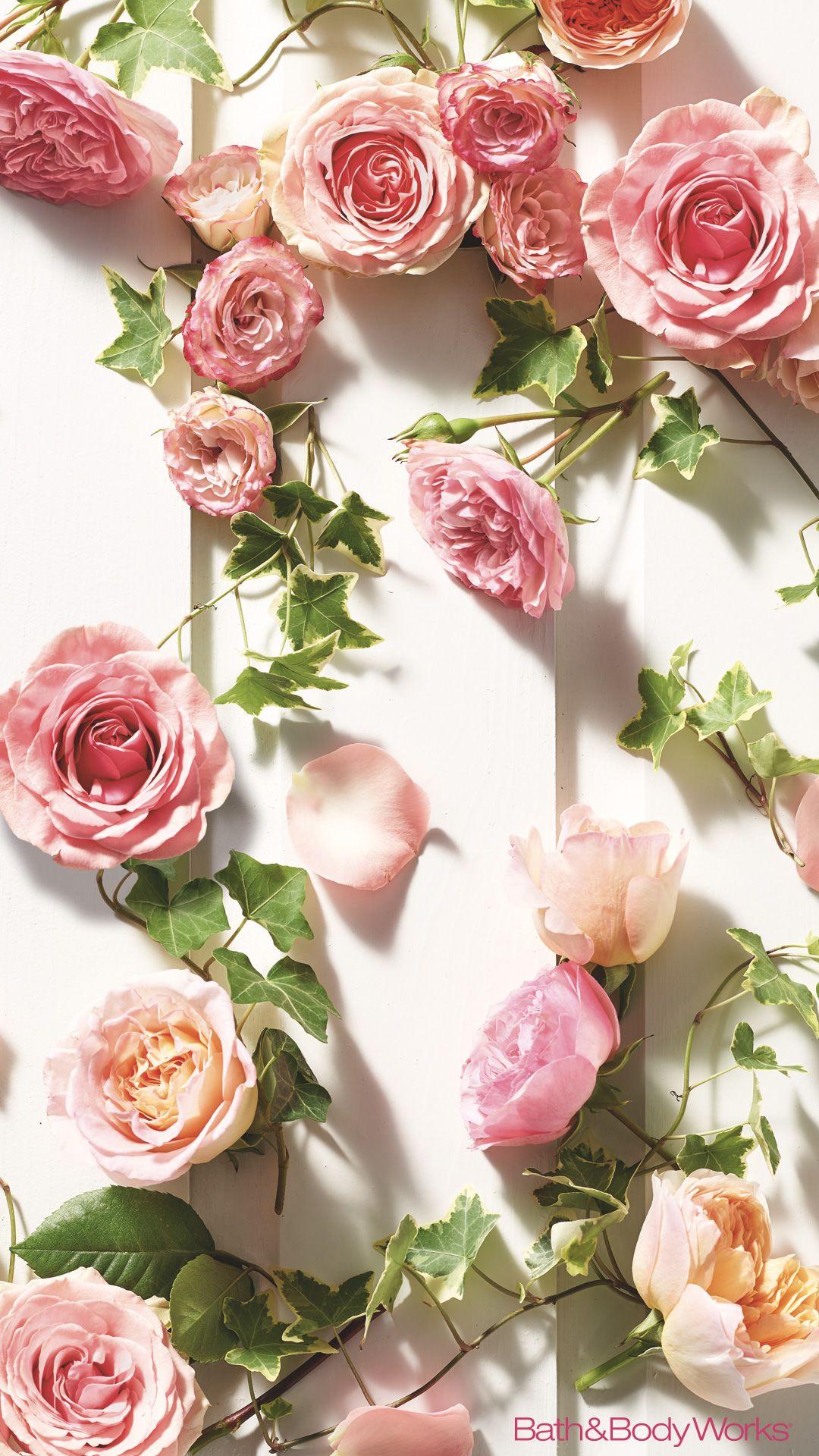 Pink Rose Iphone Wallpaper Secret Bath Body Works Wallpapers