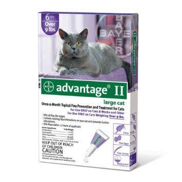Amazon Com Bayer Advantage Ii Purple 6 Month Flea Control For Cats 9 Pound Pet Supplies Cat Fleas Flea Control For Cats Cats And Kittens