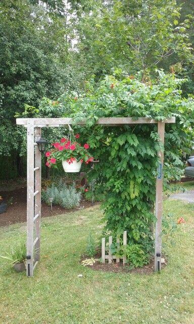 Diy Canopy Outdoor Easy Simple