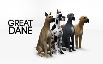 Mod The Sims Great Dane 4 Colors Sims Pets Sims 4 Pets Mod Sims 4 Pets