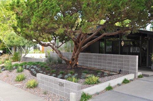 Eichler Modern Landscape I Like The Concrete Wall Modern Landscaping Modern Landscape Design Commercial Landscaping