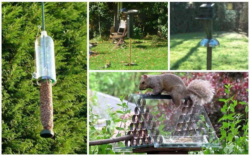 10 brilliant diy squirrelproof bird feeder ideas