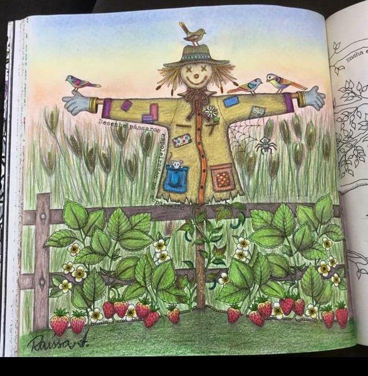 Olha só! Secret garden colouring, Secret garden coloring